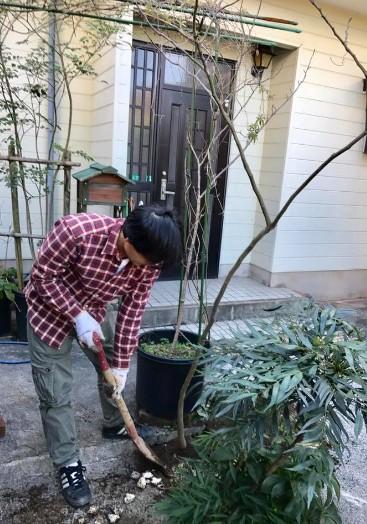 2月の庭のお手入れ…『庭木の植え替え』